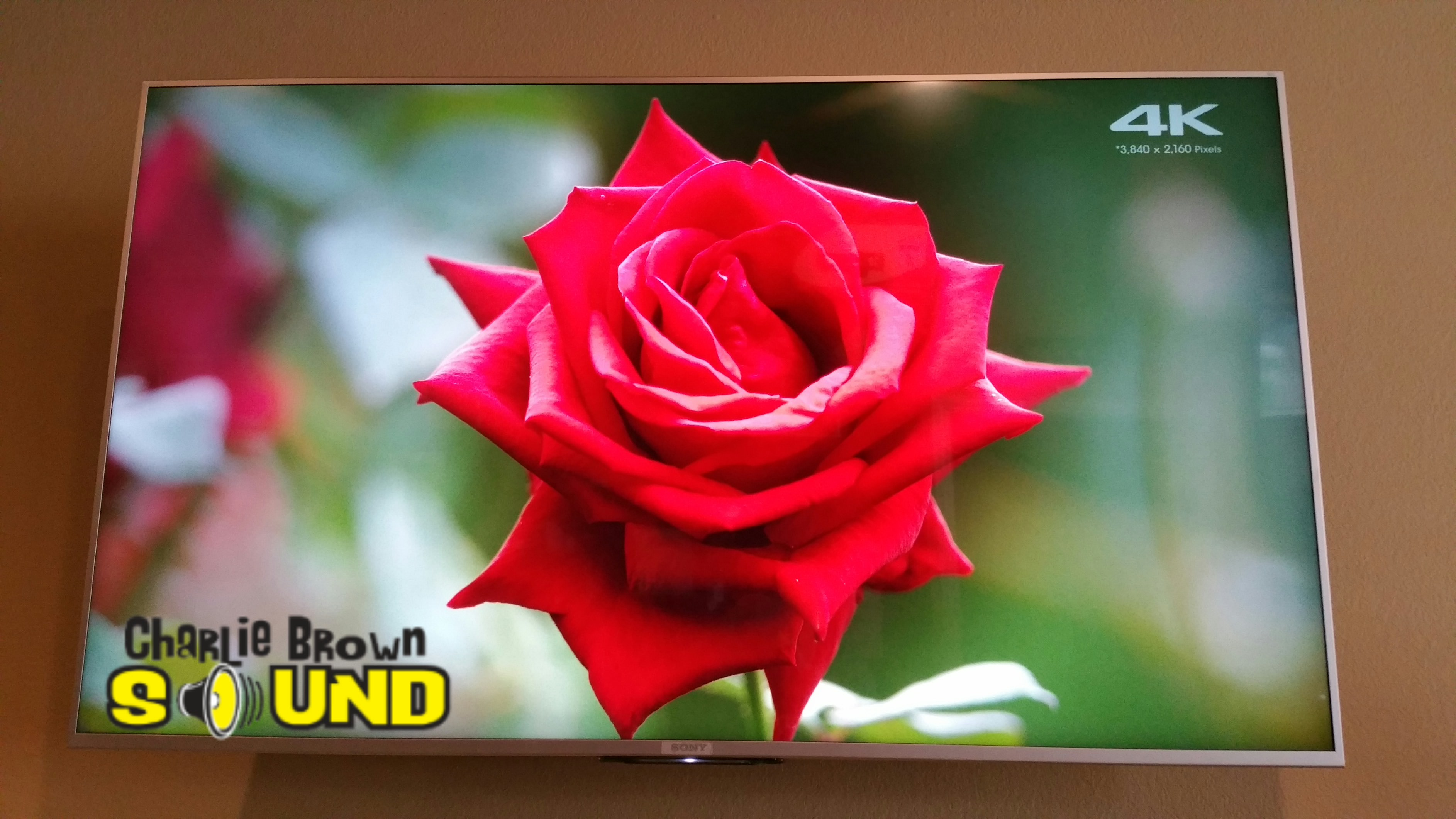 Sony 4K TV (2)